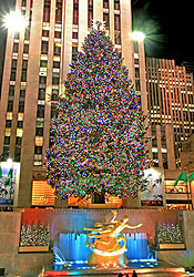 der weihnachtsbaum am rockefeller center new york my cms. Black Bedroom Furniture Sets. Home Design Ideas